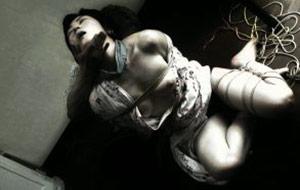 Fig. 5: Kvinder bindes med reb på kunstfærdig maner i Jouni Hokkanens Kinbaku – The Art of Bondage fra 2009.