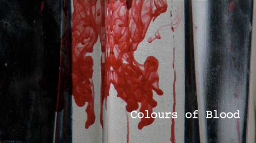 Fig. 12: Mennesker, der alle er opslugte af blod, er omdrejningspunktet i den korte dokumentar, Colours of Blood (2009).