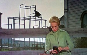 Fig. 7: Én fugl lander.