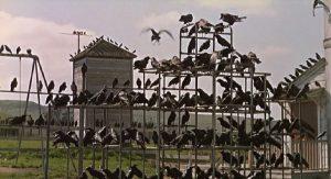 Fig. 8: En hær af fugle klar til angreb på det menneskelige.