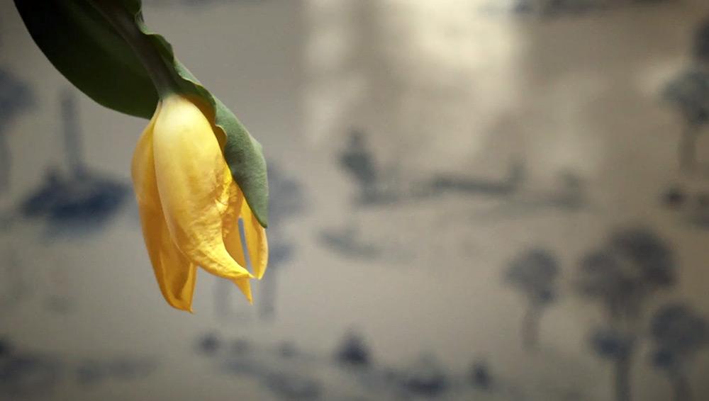 Fig. 9: Titelsekvensen til Olive Kitteridge, der på metaforisk vis indrammer seriens tema om livets gang.