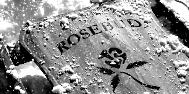 """Fig. 8: """"Rosebud"""" og Citizen Kane (1941) nævnes ofte i forbindelse med spoilerdiskussionen."""