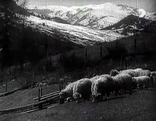 "Fig. 7: The Earth Sings (dir. Karel Plicka, 1934). The Slovak mountains are as much a part of the Slovak aesthetic as any cinematic technique. Much of Plicka's film deals with Slovaks living in these mountains, ignoring the populations that live on flat land in the South, whose culture was not always as ""Slovak"" as Plicka would have liked."