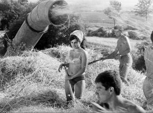 Fig. 11: The Sun in a Net (dir. Štefan Uher, 1962). Uher's film combines teenage rebellion with the Slovak countryside, paving the way for the films of the New Wave.